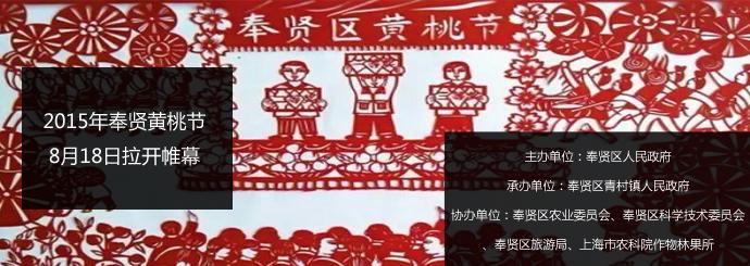 2015年奉贤黄桃节8月18日拉开帷幕