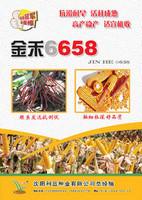 金禾658-最新��定
